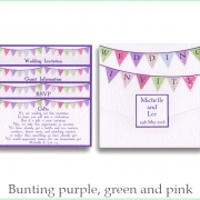 bunting purple green pink