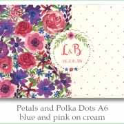 p and p a6 blue pink cream