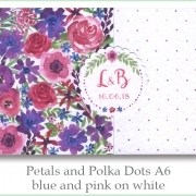 p and p a6 blue pink white