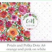 p and p a6 orange pink white